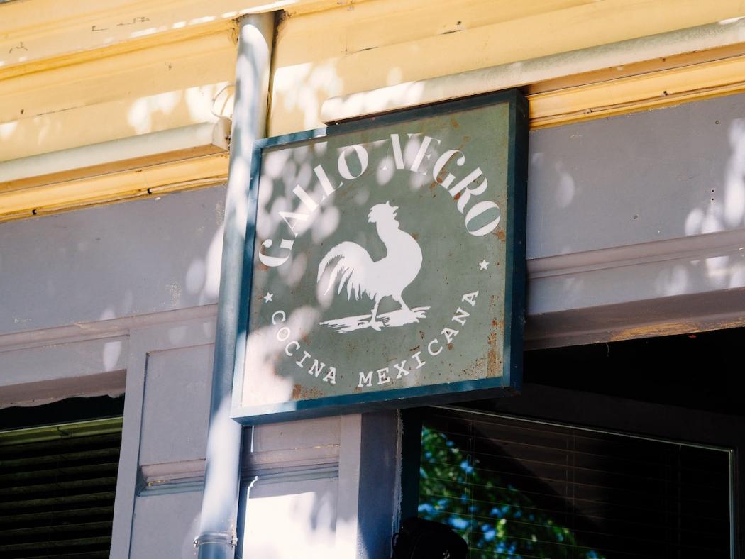 gallo-negro-schild-logo